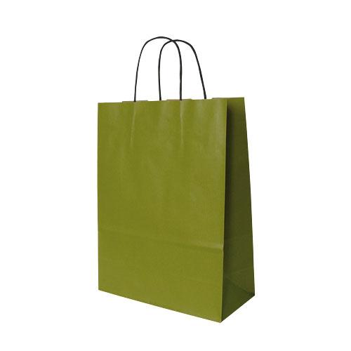 Papier-Tragetüte grün