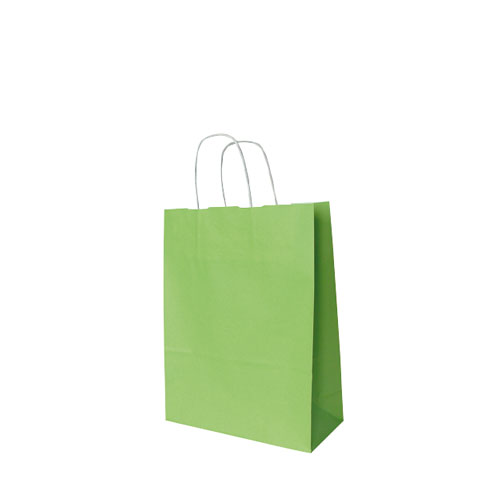 Papier-Tragetaschen hellgrün