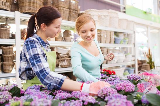 Gartencenter Ladeneinrichtung