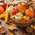 Herbstdeko für Einzelhändler