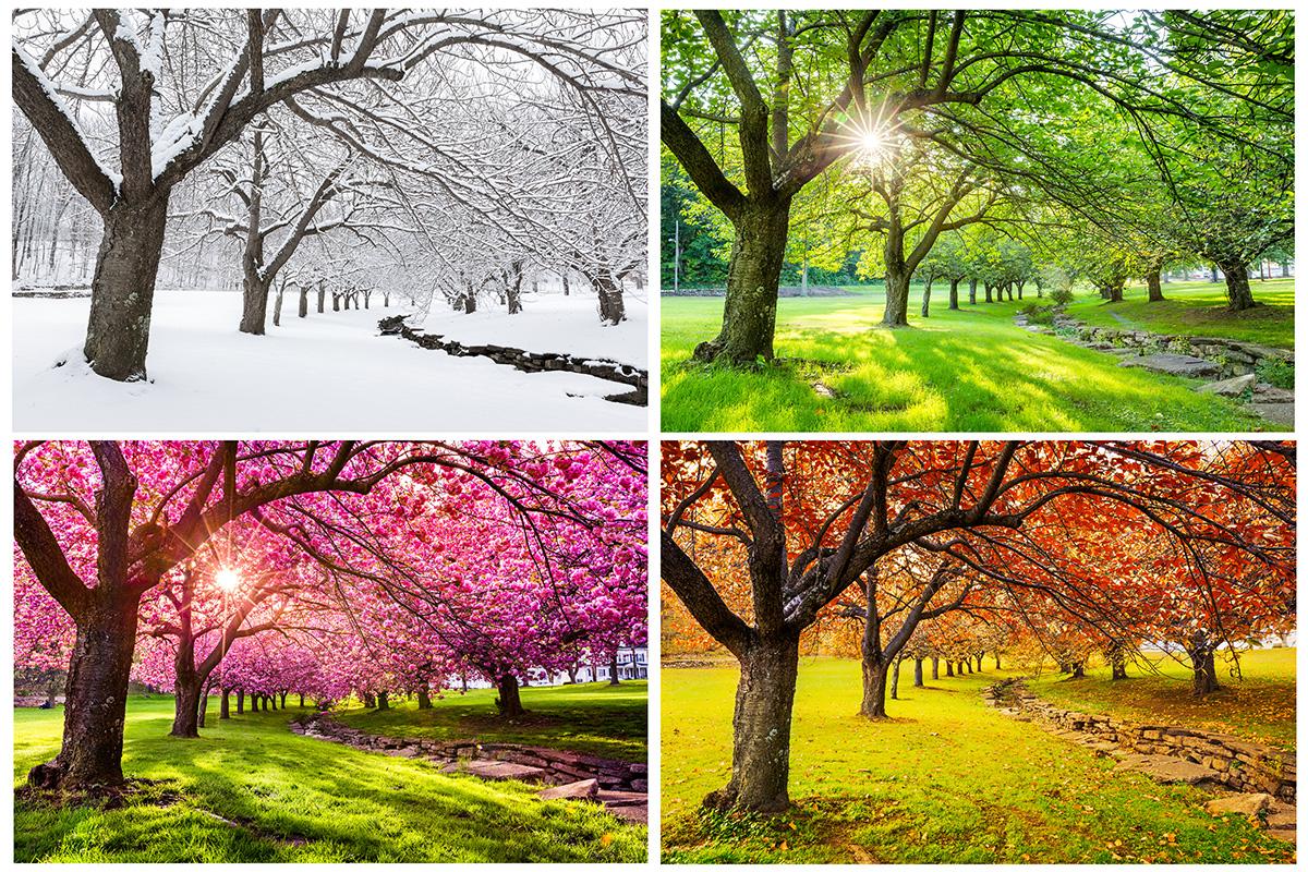 Jahreszeiten Saisonaler Verkauf